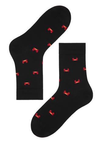 86dccc3679 Férfi zoknik a Calzedonia kínálatában