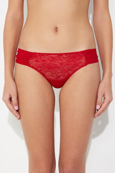 Lace and Tulle Cheeky Briefs