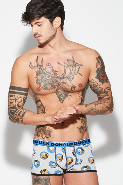 Boxer Donald DuckⒸ