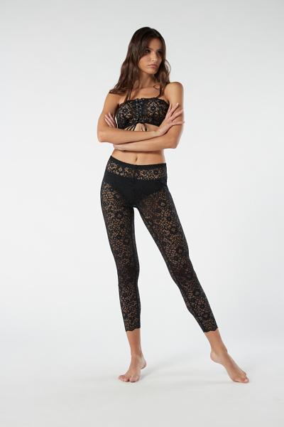 Leggings Laces Lace