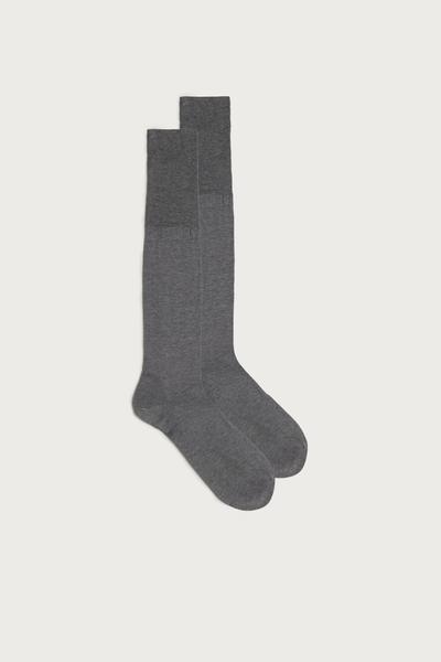 Long Sateen Cotton Lisle Socks